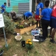 HOCN Success Story, Volunteers plant flowers at the Potomac and Greenwood Community Garden
